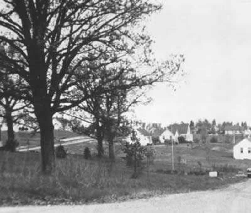 Lookout view, 1946, photo by Ken & Betty Gabel.